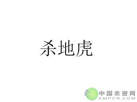 杀地虎(10%二嗪磷颗粒剂)