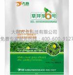 草坪乐6号:郑州大韩农业科技有限公司