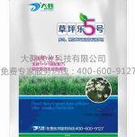 草坪乐5号:郑州大韩农业科技有限公司