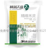林荫大道2号:郑州大韩农业科技有限公司