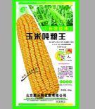 玉米吨粮王:北京肥沃特化肥有限公司
